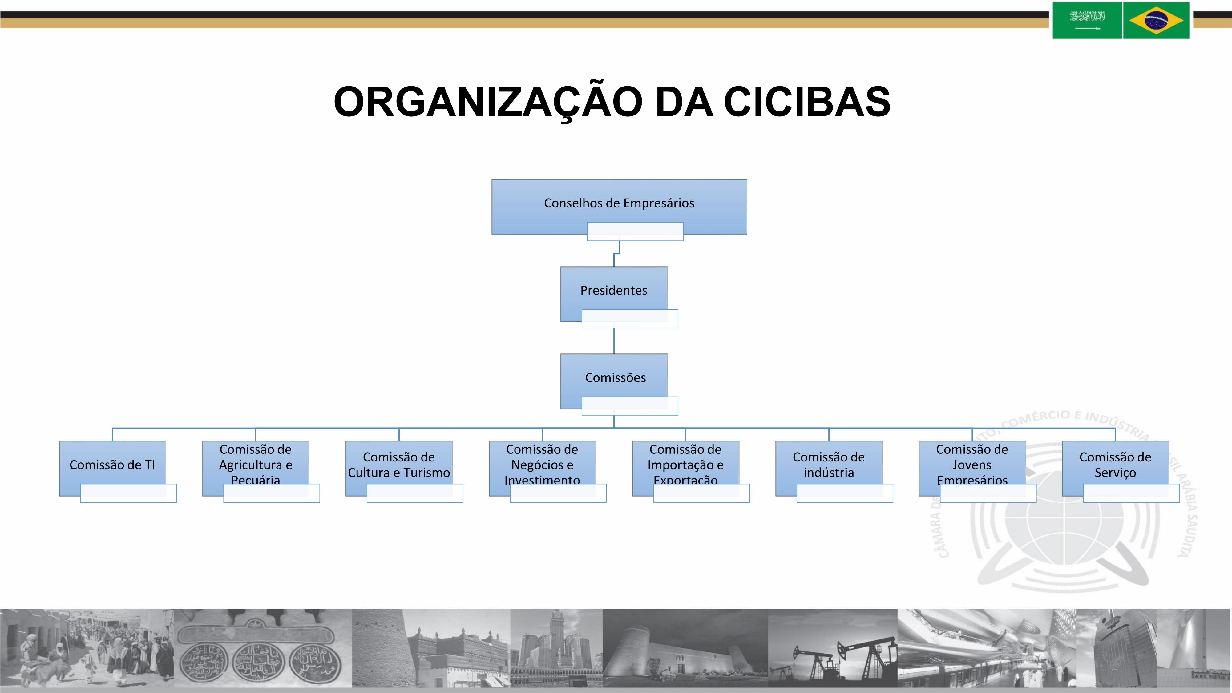 cicibasorganizaçao
